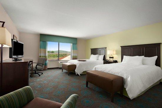 Hampton Inn & Suites Huntsville / Research Park Area: Queen Room
