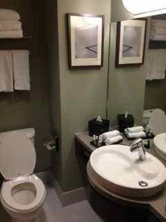 Hotel Alma & Seasonal Residence at the University of Calgary: Bathroom