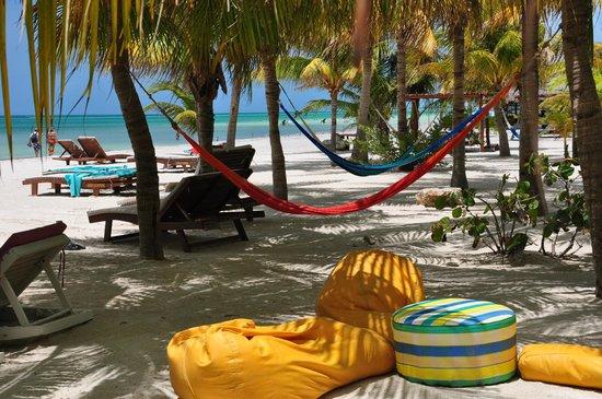 Holbox Hotel Casa las Tortugas - Petit Beach Hotel & Spa: Relax Total, quiero volver!