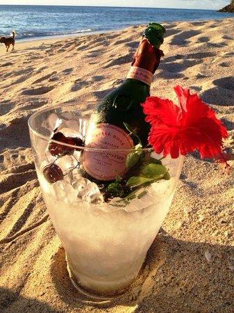 Jacqui O's BeachHouse: LP on beach