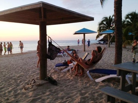 Jacqui O's BeachHouse: lazy days