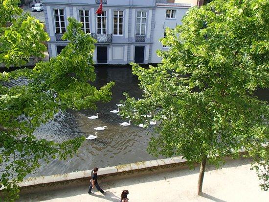 Die Swaene: Zo vergeet je de naam van het hotel niet