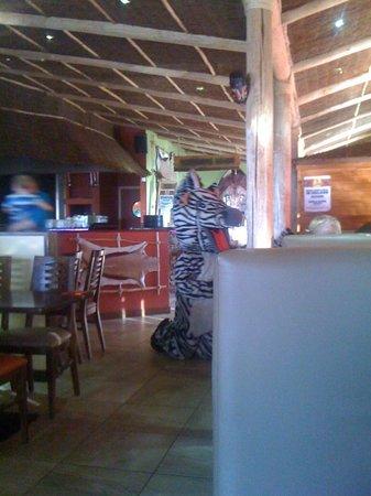 Makhulu 5: Friendly Zebra