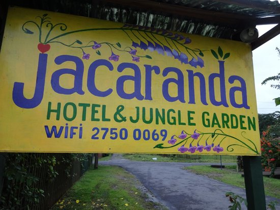 Jacaranda Hotel and Jungle Garden: Jacaranda