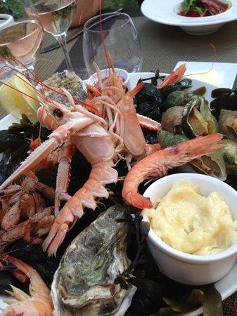 assiette de fruits de mer foto le patio restaurant montreuil sur mer tripadvisor