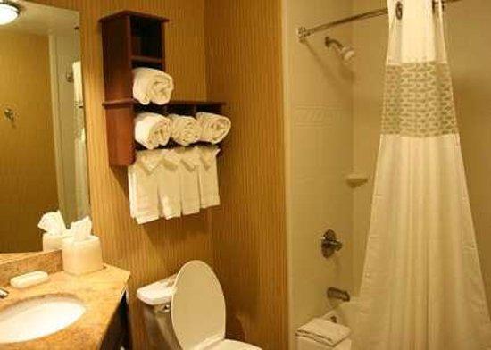 Hampton Inn Clemson-University Area: Roomy Standard Bathroom