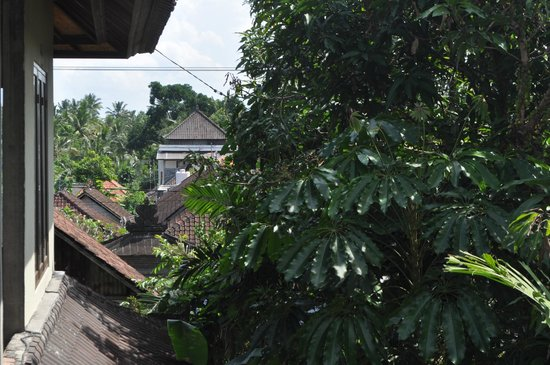 Karang Mesari Ubud Bungalow : View from the suite
