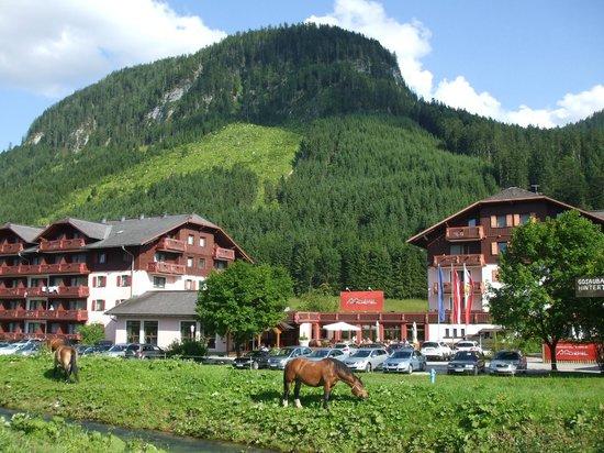 Vitalhotel Gosau: hotel
