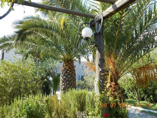 Zervas Apartments: The gardens at Zervas