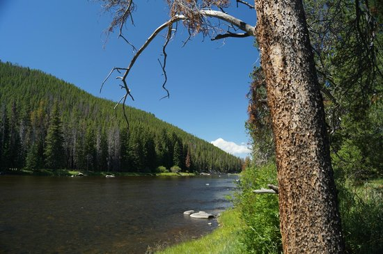 Flying R Guest Cabins: The Big Hole River west of Wise River, Montana