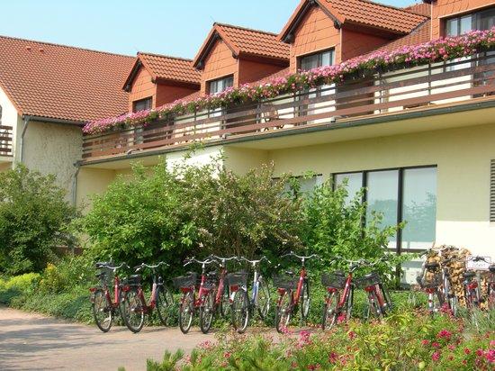 Ringhotel Zum Stein: rent-a-bike