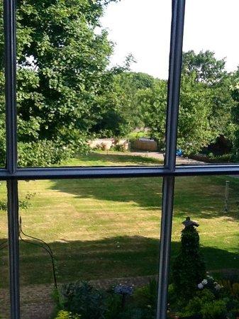 Heath House: rear garden