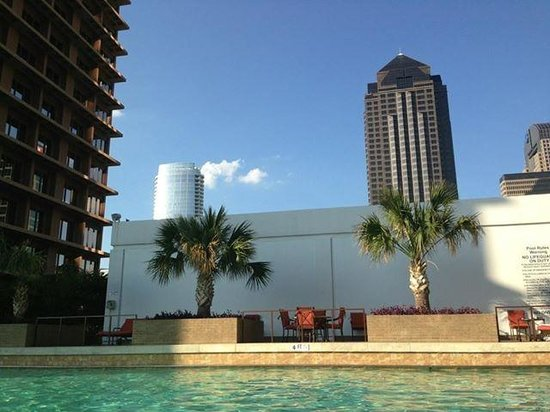 The Fairmont Dallas: At the pool
