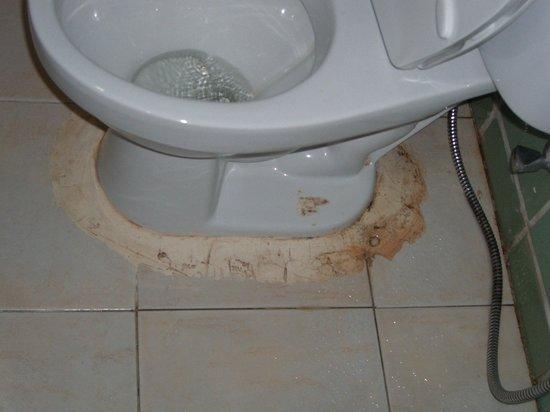 The Aiyapura Koh Chang: Leaking Toilet