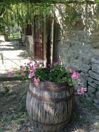 Villa Manuela: Colour blooms everywhere!