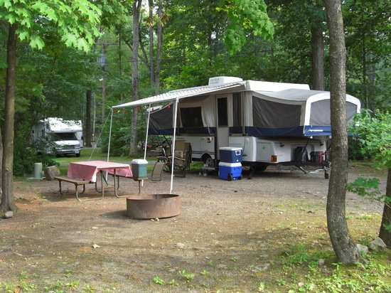 Lake George RV Park: Our large site in the 300 row of Pine-North section