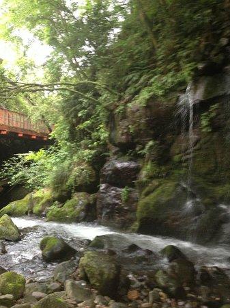 Manyo Park : Path along the stream