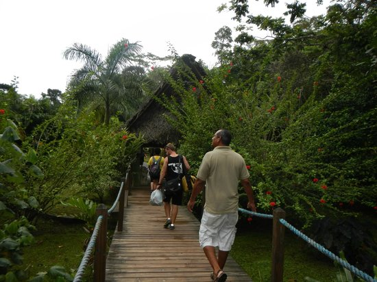 Bocas Island Lodge: Walk from the dock