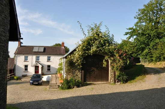 Blaenfforest Cottage Holidays : The Beautiful courtyard