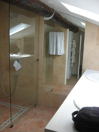 Le Bibion : Bathroom with glass shower
