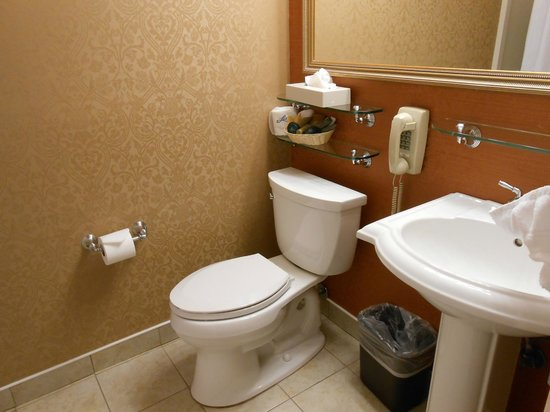 Millwood Inn & Suites : Baño