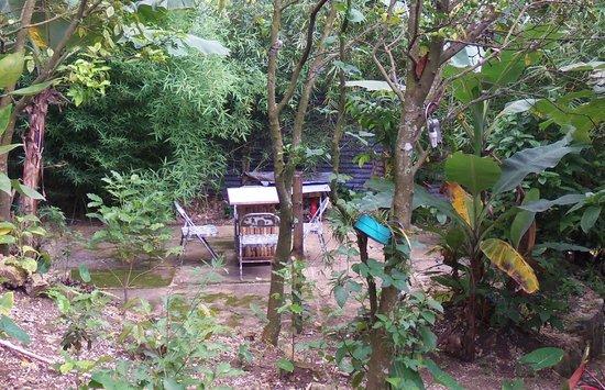 Vue La Montagne Lodge: bck yard