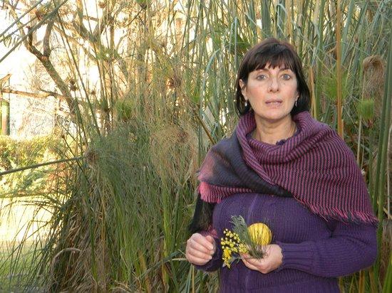 La Casa de los Limoneros : Recorriendo el lugar