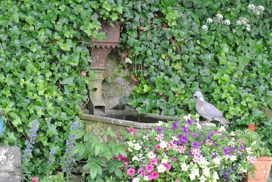 The Cottages: Garden Foutain with Doves