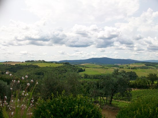 Locanda Le Piazze : view from the pool