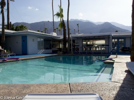 Palm Springs Rendezvous : Rendevous/Pool side in the afternoon