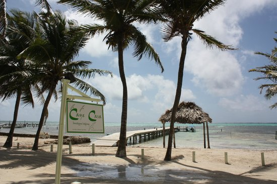 Caye Casa: View from premise - easy walk to pier and private boat