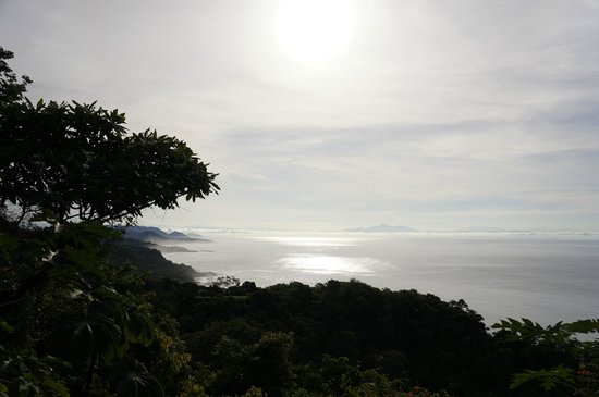 Anamaya Resort & Retreat Center: View from Yoga Deck
