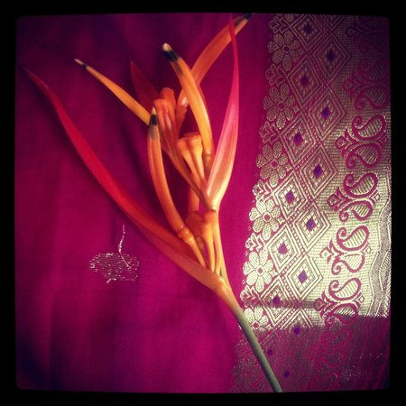 Anamaya Resort & Retreat Center: Staff left us a flower on our pillow just because