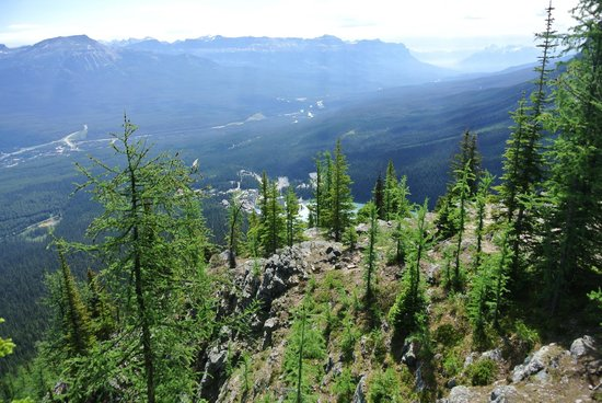Timberline Tours Ltd. - Private Day Tours: View as we climb The Little Beehive