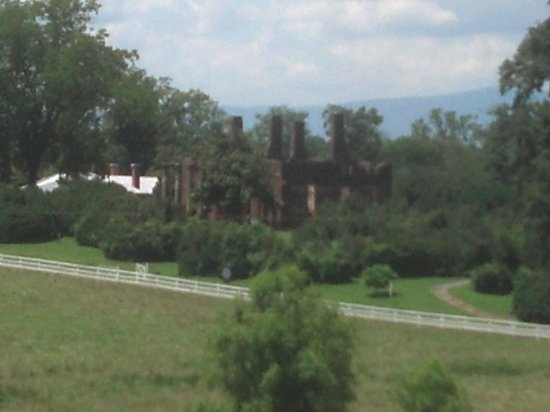 Barboursville Vineyards and Historic Ruins : Barboursville Ruins