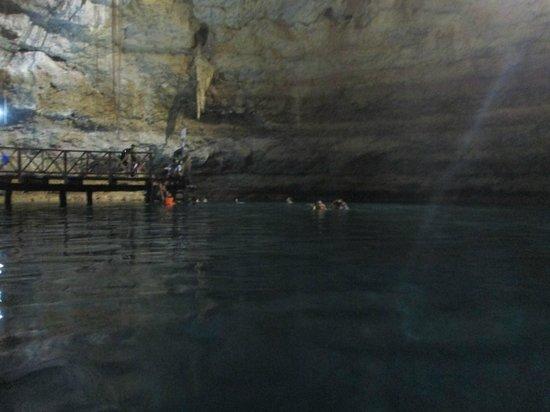 Multum Ha Cenote: just a view inside  the cenote