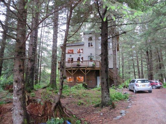 Beach House Rentals: Treefort cabin