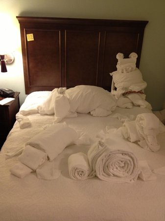 Hampton Inn Farmington: then added North American Oliphant & a bear reading