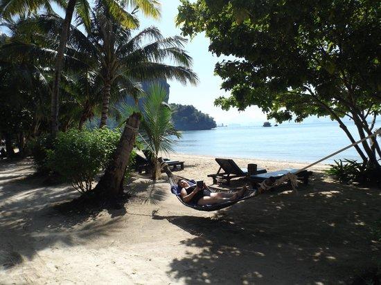 Paradise KohYao: Hammock on the beach