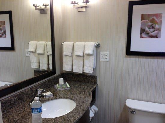 Bath Room 524 Shower Only Picture Of Hilton Garden Inn Salt Lake City Airport Salt Lake City