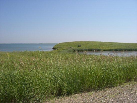 Audubon National Wildlife Refuge Complex: NWR Scenery
