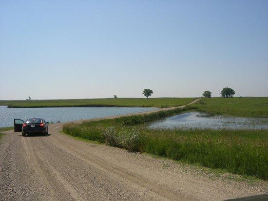 Audubon National Wildlife Refuge Complex: Auto Tour Road