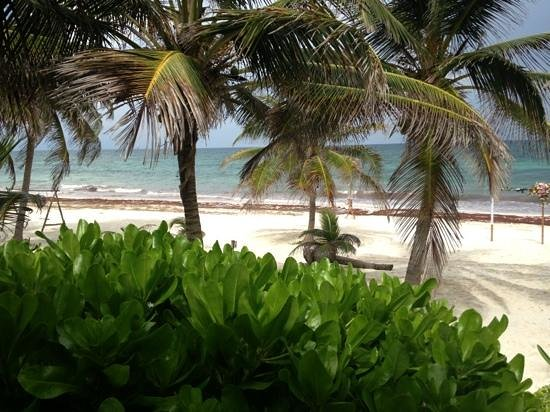Hostel Sheck: Beach paradise!