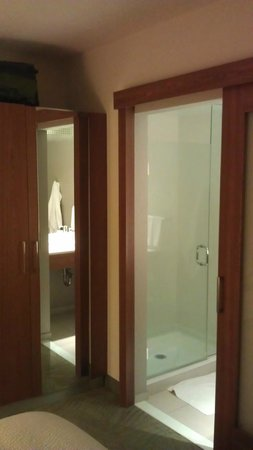SpringHill Suites Columbus OSU: Separate shower room and water closet
