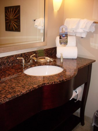 Holiday Inn Hotel & Suites Orange Park : Bathroom