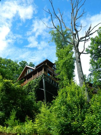 Brother's Cove Log Cabin Rentals : Cabin from Below