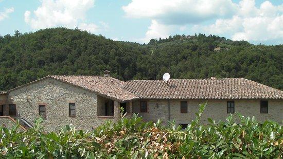 Agriturismo Agrisolana: struttura