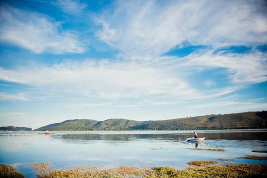 Oyster Creek Lodge : Knysna's hidden little treasure