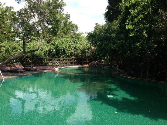 Uga Jungle Beach : Cooling Pool