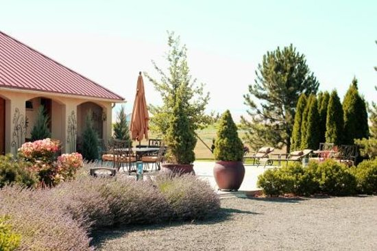 Girasol Vineyard & Inn: Common patio area